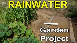 Rainwater Gardening Project - Desert Permaculture 2014