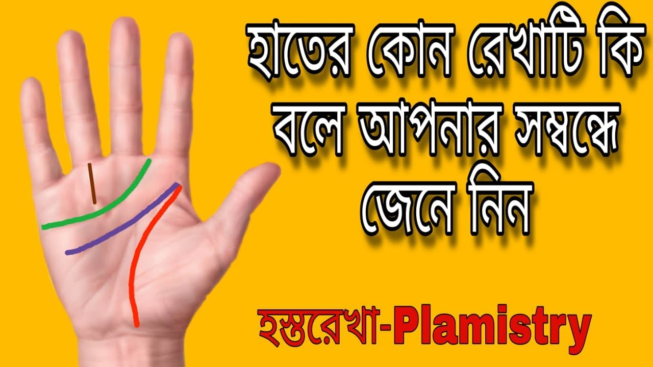 Download Learn Palmistry. হাতের কোন রেখাটি কী বলে আপনার সম্বন্ধে জেনে নিন | Hater kon rekhati ki bole jenenin