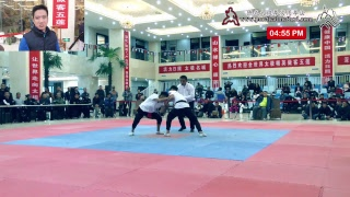 DQS 2017 Push Hand Competition Day 2 Part 2