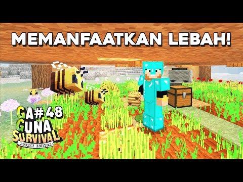 Lebah Penumbuh Farm! - Minecraft Survival Pocket Edition Indonesia #48
