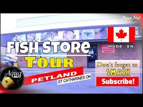 Aquarium Fish Store Shop Tour of Petland 🐟 Walk Through of Niagara's Top Rated Store