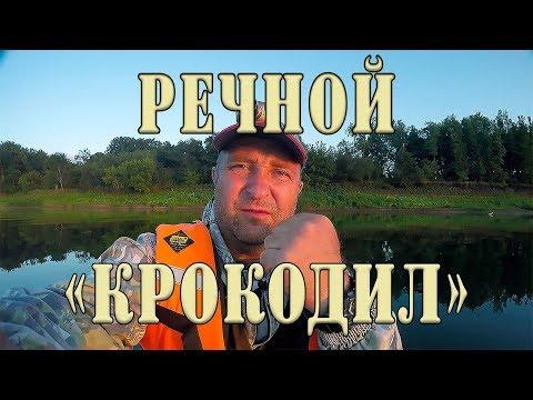 """""""Речной крокодил"""". Трофейная щука выходит победителем!!!"""