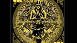 16-dollars---volbeat-in-the-description