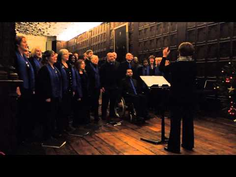 Birmingham City Council Choir - Hallelujah