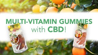 Multi-Vitamin CBD Gummies