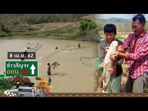 ข่าวสัญจร ออน 34 | ชาวบ้านนับสิบ! เหวี่ยงแหจับปลาตัวยักษ์ หลังน้ำเริ่มแห้ง | 8 เม.ย.62