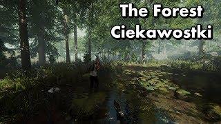 The Forest - Ciekawostki - Jarius Project, mitologia, Tomb Raider i nie tylko