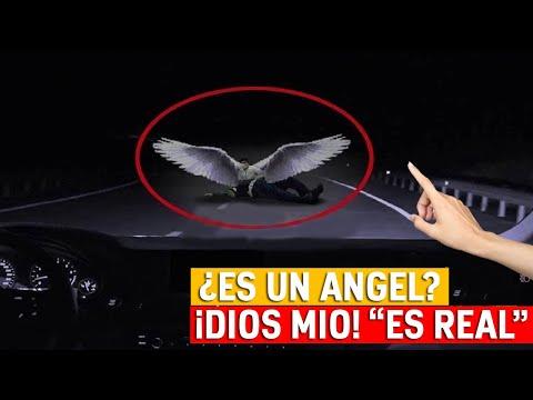 aparecen-angeles-reales-captados-en-video-volando-en-el-cielo-|-milagros-|-misterios-tv