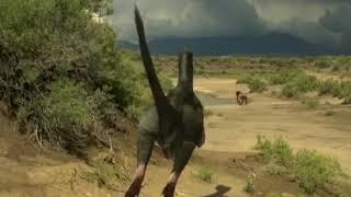 La caza de los velociraptores