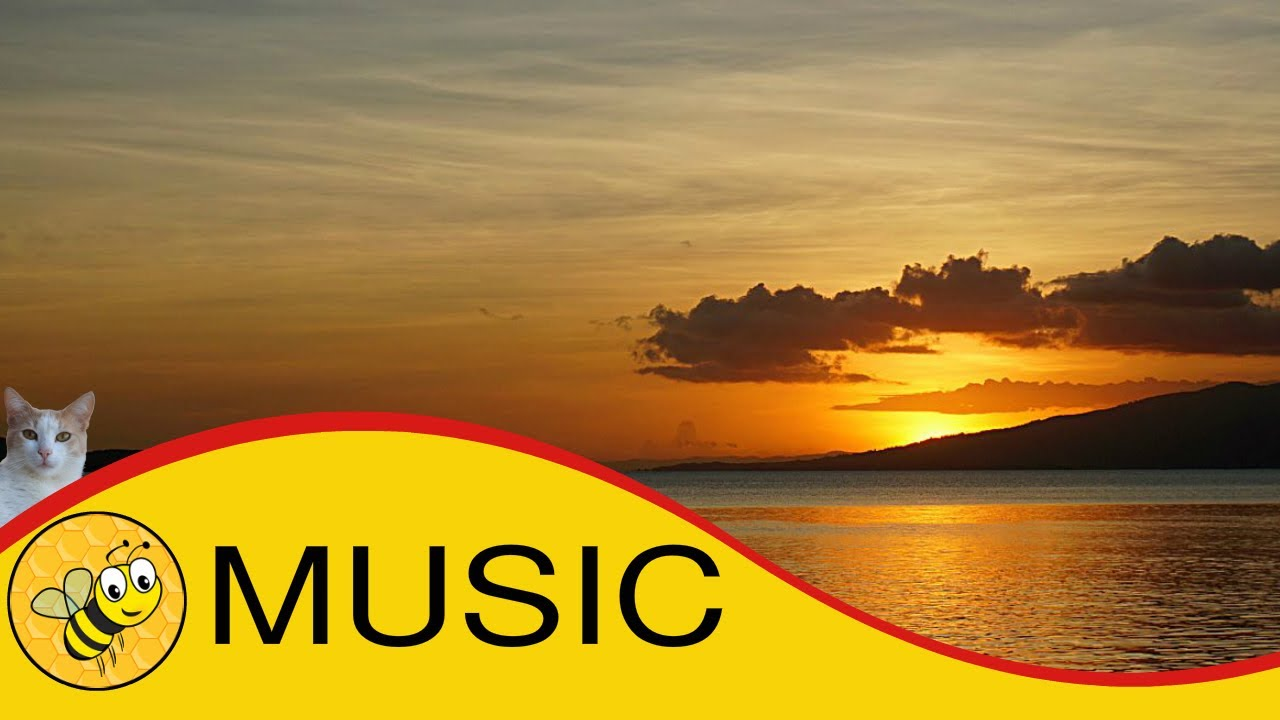 Therapeutic Music: Calming Music, Study Music, Short Length, #relaxation  music