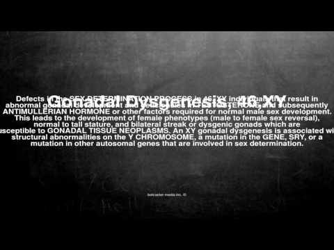 Medical vocabulary: What does Gonadal Dysgenesis, 46,XY mean