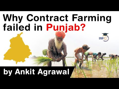 What is Contract Farming? What are the reasons behind Contract Farming's failure in Punjab? #UPSC