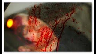 Mördern auf der Spur - Die Blutspur [Doku]