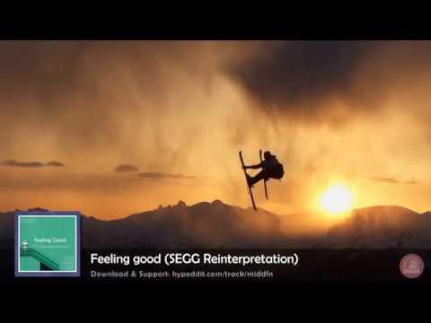 Nina Simone - Feeling good (SEGG Reinterpretation)