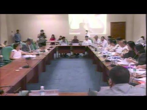 Villar scolds bureau of plant industry head over garlic cartels