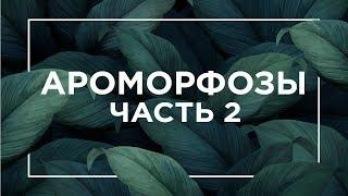 Ароморфозы растений и животных | ЕГЭ Биология | Даниил Дарвин