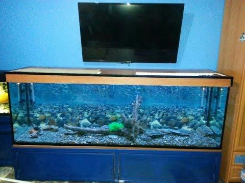 Tutorial como hacer un acuario casero de 2metros y 600 for Como hacer un criadero de peces casero