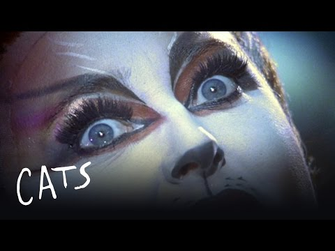 The Film Credits | Cats the Musical