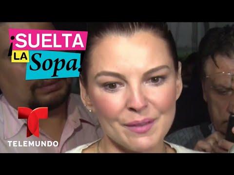 Julián Gil demandó a Marjorie de Sousa por violencia familiar   Suelta La Sopa   Entretenimiento