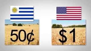 Chapter 7: Grasslands Uruguay's 4x Capital Advantage in Farmland Investment