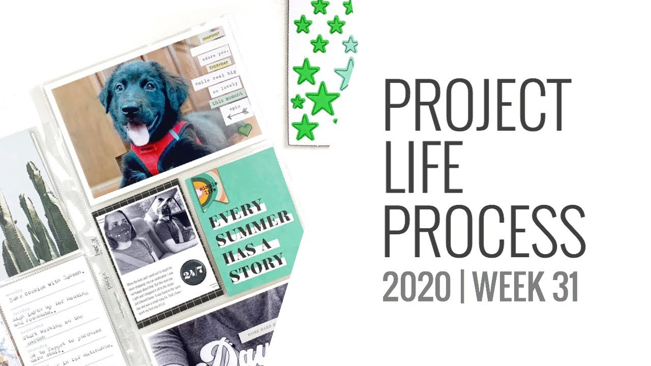 Project Life Process Layout 2020 | Week 31