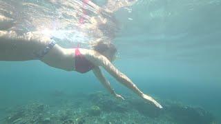 Снорклинг на Бали подводный мир Амед подводный храм