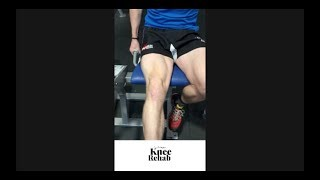 Knee Injury - Rugby Physio and Rehab