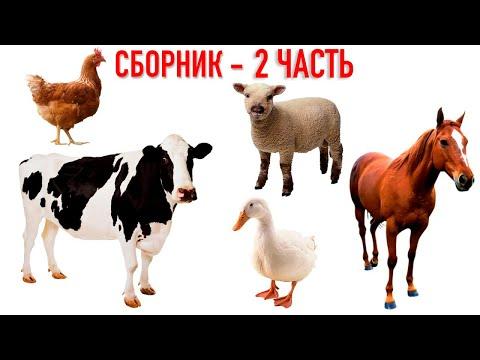 Сборник Мультфильмов Учим Животных - Как Говорят Животные Развивающие Мультики для малышей ТроЛЛикс
