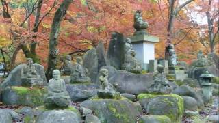 紅葉 大寧寺 山口 日本の風景シリーズ -22-  Autumn liaves  Taineiji  Yamaguchi