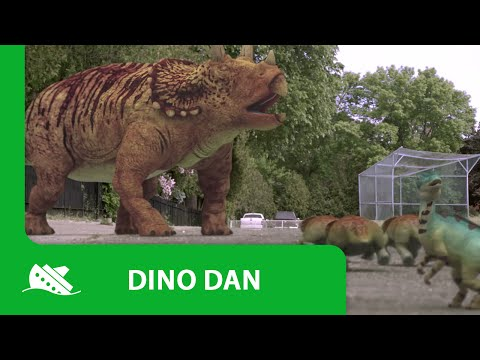 "Best of DinoDan ""The Triceratops"""