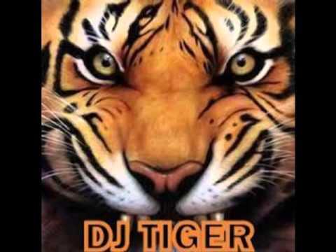 ALL BLACK Ft.Raftaar song mixing by DJ TIGER