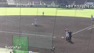 プロ野球合同トライアウト2016、甲子園球場で開催。前 阪神の鶴直人の全...