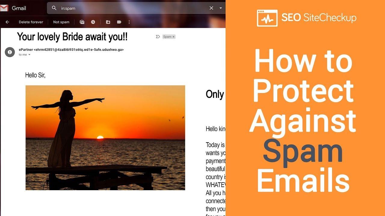 Plaintext Emails Test   SEO Site Checkup