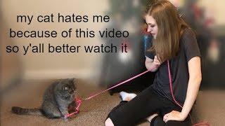 Teaching My Cat to Walk on a Leash