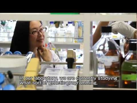 Introduction to Tohoku University Graduate School of Medicine (Full English version)
