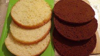 Жай Бисквит және Шоколадты бисквит|Классический Бисквит и Шоколадный бисквит|Classic Sponge cake