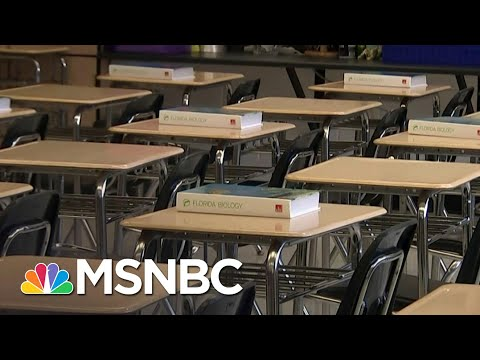 Redlener: Wrong To Close Schools But Not Bars Over Covid-19 Surge | The 11th Hour | MSNBC