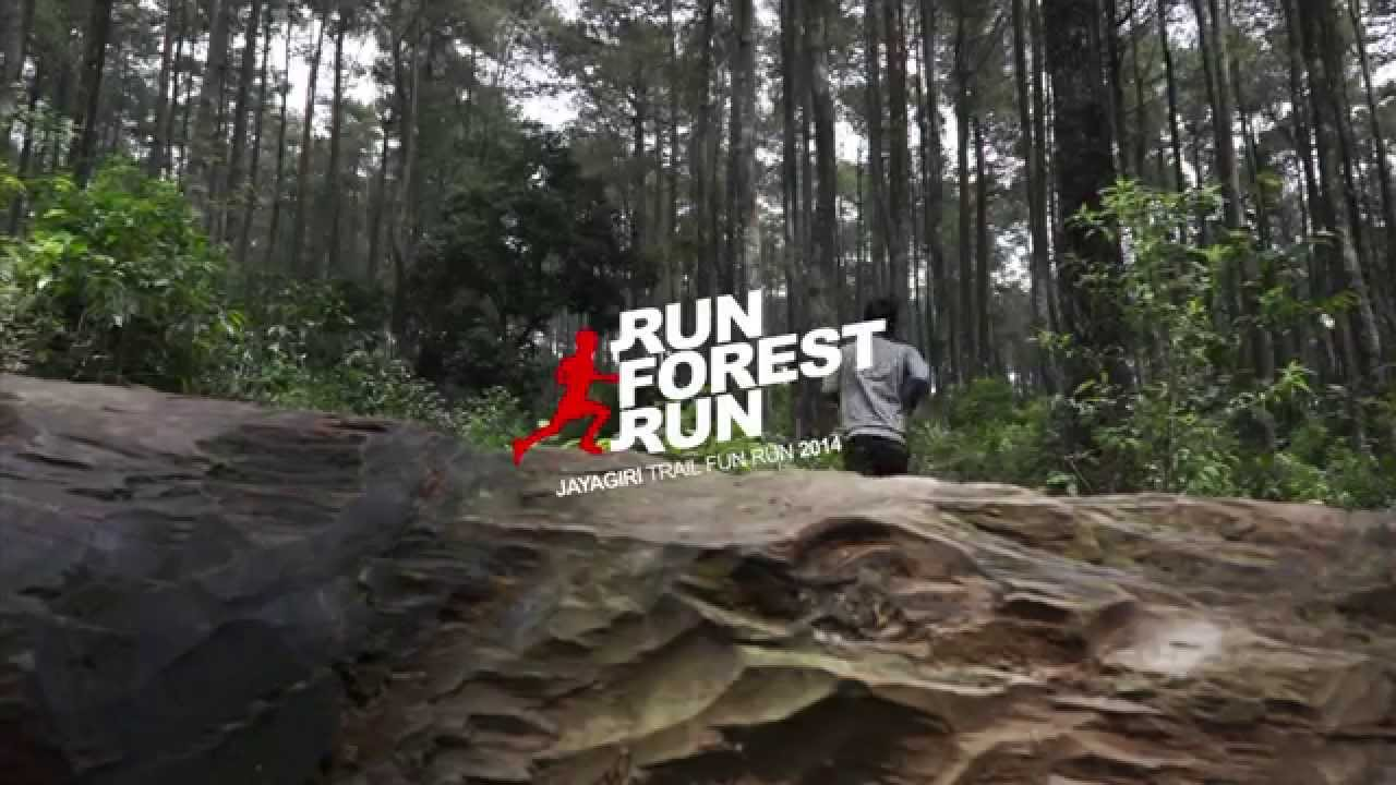 Fun Forest Run