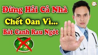 Bát ăn canh RAU NGÓT độc như THUỐC CHUỘT vì sai lầm này, rất hại sức khỏe