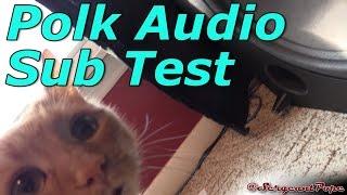 Polk Audio 12