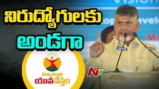 CM Chandrababu Mukya Mantri Yuva Nestham Creating New Records | NTV