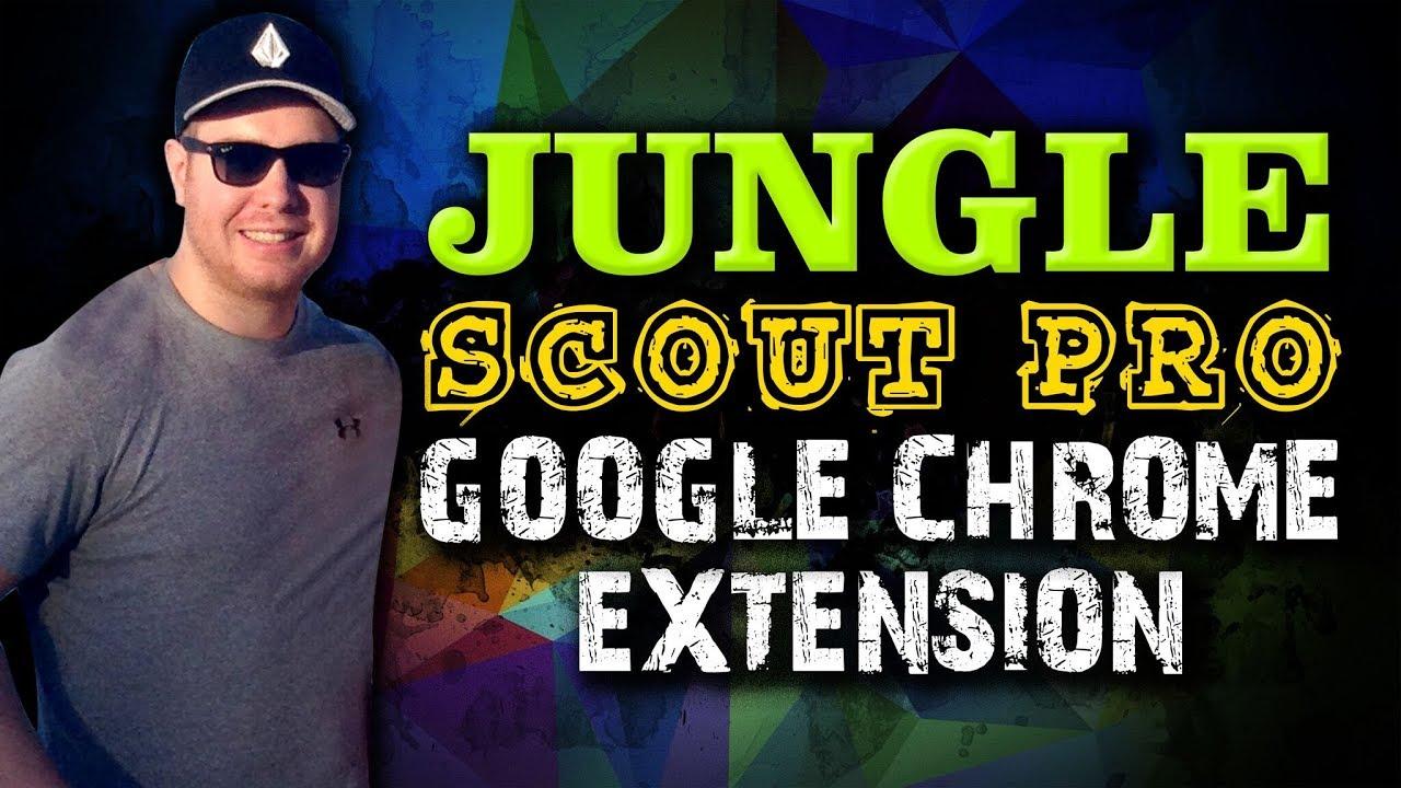 jungle scout pro extension