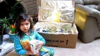 Plant Seedling Grow Box Fun Project With Kids