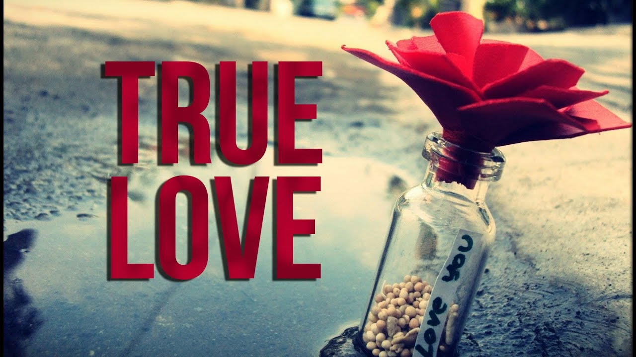 Image result for true love