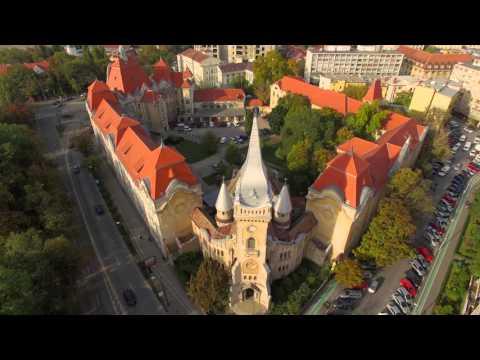 Zile superbe de toamna in minunata Timisoara
