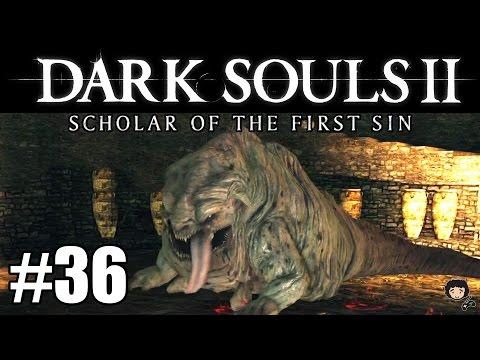 Dark Souls 2  | Episodio 36 | Demonio Codicioso (es un Pug!)