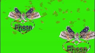 Ehsan Name Green Screen | Ehsan Name Effects chroma key Animated Video