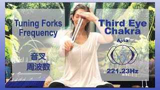 Third Eye Chakra Tuning Forks Frequency 221.23Hz 音叉 周波数 第6チャクラ