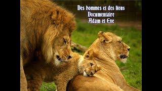 Des hommes et des lions