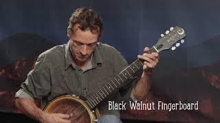 Luna Celtic 6 String Banjo Demo